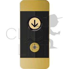 Black Pad LOP -V2 GOLD- 1 button arrow down + 1 C/C